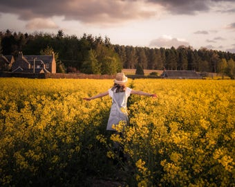 Rapeseed in the Carse