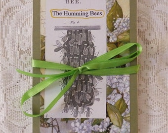 Bee Book, handmade book with story and art, concertina book, beastiary, honey bees