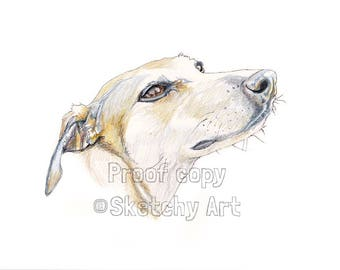 Original Drawing! of your Dog by Sketchy Art
