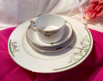 Heinrich co. H & C Bavaria china set