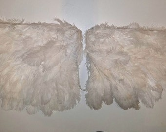 Angel Wings 100% Real Feathers ~ Costume / Cosplay / Wall Art