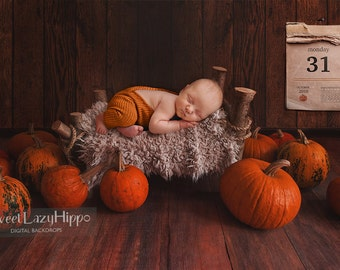 Newborn Digital Backdrop with bed and pumpkins. Halloween. JPG file