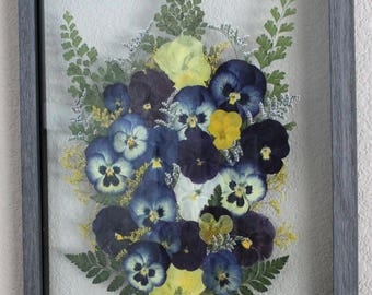 Framed Pressed Flowers- Pansies