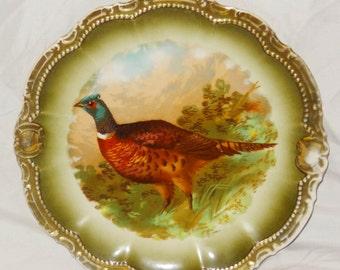 "Turkey Display Plate, PM Bavaria, Gold Trim, 10"" across"