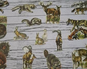 36 Piece Vintage Woodland Animal Sticker Set