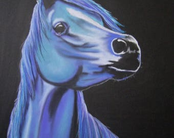 """Blue"" Arabian horse"