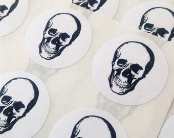 Anatomical skull stickers, Skull anatomical stickers, Stickers anatomical skull, Anatomical stickers skull, Skull stickers anatomical,