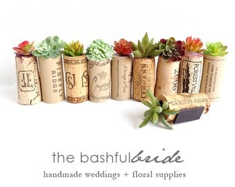 Wedding favors, faux succulent favors, rustic wedding favor, plant favors, shower favor, cheap favor, fridge magnet, rustic wedding