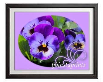 Purple Floral Wall Print, Pansy Wall Print, Purple Wall Print, Purple Pansy Print, Purple Floral Print, 8x10 Wall Print