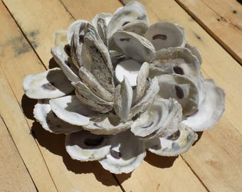 Oyster Shell Candle Holder - Home Decor