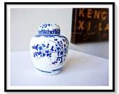 Ginger Jar Photograph Dig...