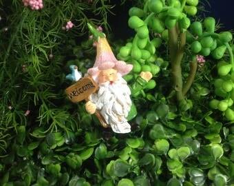 Gnome Miniature ,Fairy Garden,Fairy Garden Kit, Terrarium Kit,Miniature  Garden,