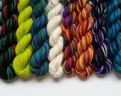 Mystical Creatures Shelley fingering weight 100% wool mini skein set