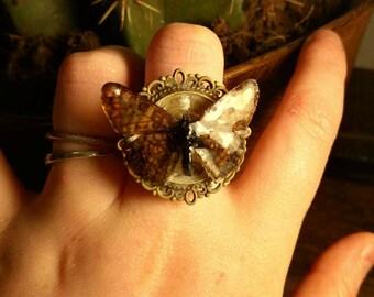 Beautiful,  handmade, adjustable, butterfly ring