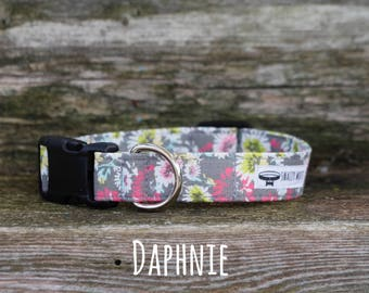 Dog Collar, Girl Dog Collar, Flower Dog Collar, Daphnie