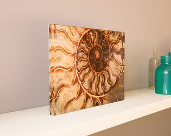 Large Acrylic Photo Blocks (9x6, 12x8, 15x10, 18x12) - Mother Nature Abstract Series 2 - Made 100% In USA - Free Shipping