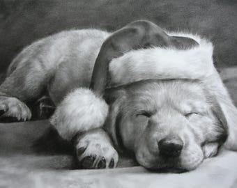 "Custom Original Drawing Portrait 11""X15"",portrait from photo, pet portrait, art, dog, cat, draw my pet, Pet Drawing,Pet painting,Sketch"