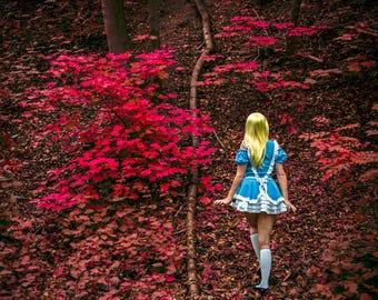 Georgie - Alice in Wonderland 7x5in Print