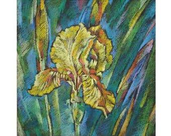 Pastel, iris, Yellow flowers, yellow iris, modern painting,modern author's painting,decoration of an interior,30x30cm Razumeyko Catherine