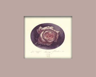 A Signed Etching, Rose, Original color etching, Flower Art, Print, Mini Print
