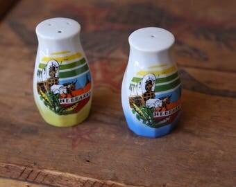 Vintage Nebraska Salt & Pepper Shakers