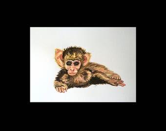 Postcard monkey / 1 postcard A6