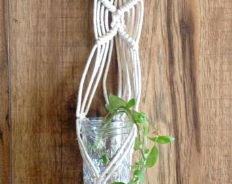 Macrame & Driftwood plant rooter
