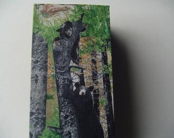 Recycled wood box, black bear design, decorative storage,  cotton fabric design, storage box, table decor