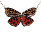 Real Tiger Moth Necklace - Statement Necklace - Wearable Nature Art - Grammia Virgo Moth