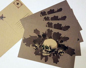 "5pk ""Belladonna"" Postcards"