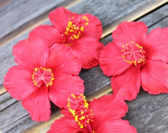 Red hibiscus hair pick. Polynesian costume, hula dance costume flower. Tahitian costume