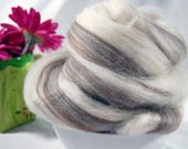 Blueface Swirl Top - blend of white and brown wools (4 oz or 115 grams)