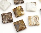 Briche agate beads, flat square white brown semiprecious stone, smooth 12mm, 12 pcs