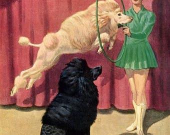 Standard Poodles Walter Weber Dog Illustration Double Sided English Bulldog for Framing 1943