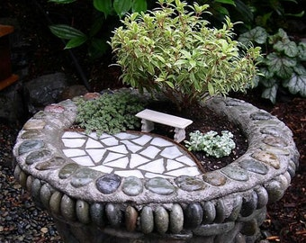 CUSTOM Miniature Garden Kit for Anyone, You Pick, We Help, Fairy Garden Gifts, Miniature Plants, Trees, Shipping & Bestselling Book Included