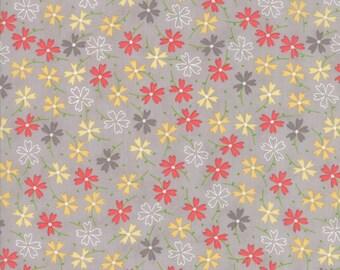 Lulu Lane (29023 21) Grey Pansies by Corey Yoder