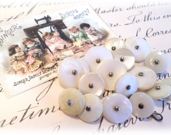 16 Shabby Vintage Pearl Shank Buttons 2 Sizes White Pearl Buttons
