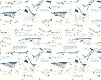 Sharks Wallpaper