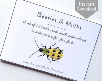Insect Cards with Beetles and Moths - Digital - Printable PDF