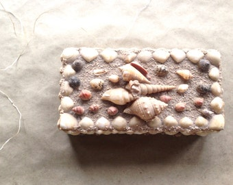 Vintage Seashell Box Seaside Cottage Decor Storage and Display Keepsake Memento Keeper