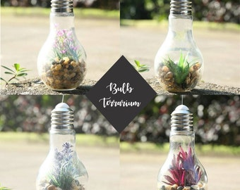Hanging Glass Light Bulb Terrarium - Personalized