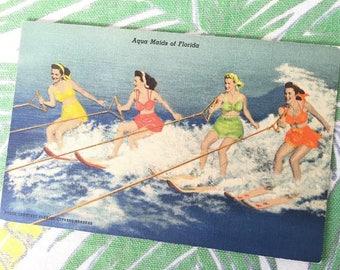 Vintage Florida postcard Cypress Gardens Aqua Maids waterskis waterskiing