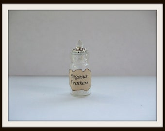 Witch Wizard Gothic Pegus Feathers dollhouse miniature Spell bottle halloween