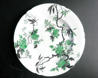 Ovington Plate, Shelley England, Fine Bone China, Green Black White