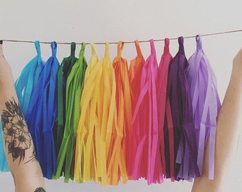 RAINBOW FUN / tissue paper tassel garland / rainbow decorations / classroom decoration / wedding decorations / birthday garland / fringe