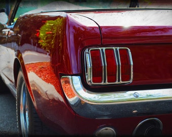 1964 1/2 Ford Mustang - Classic Car - Garage Art - Pop Art - Fine Art Photograph by Kelly Warren