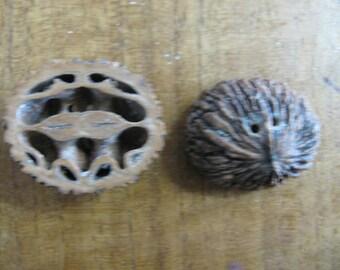 Black Walnut Shell Buttons