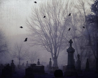 "Surreal cemetery photography dark purple lavender black gothic birds trees eerie - "" Graveyard"" 8 x 10"