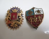 Vintage costume jewelry  / 2 brooches
