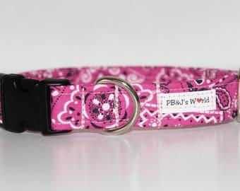 PBJ World Custom Collar...The Rosie